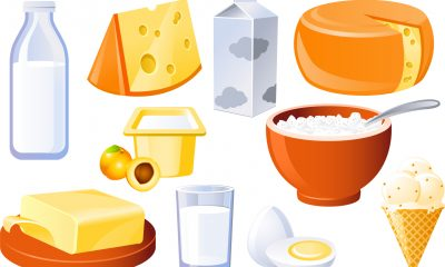 milk_and_products_sketch